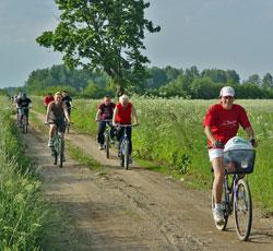 jalgratturid2