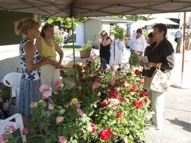 Foto: lillefestival.tallinn.ee